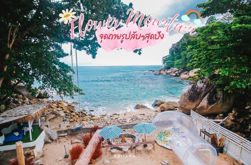 Cafe Flower Mountain Beach หาดกะหลิม ภูเก็ต